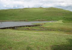 Lake Heron Game & Trout Farm