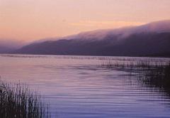 Lake Pleasant Living