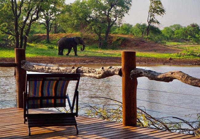Lamai Safari