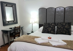 Room 4 - Strelitzia