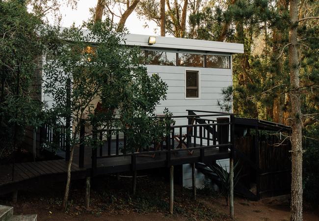 Acacia view from Garden