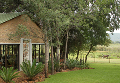 Laughing Dove Guesthouse