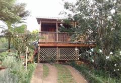 Fig Tree Cottage