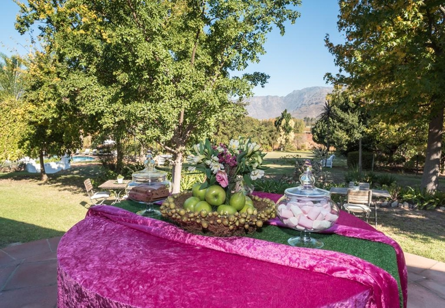 Breakfast patio with garden view