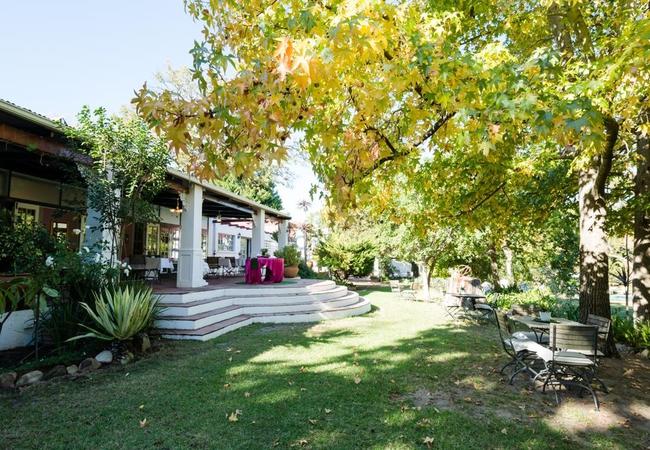 Breakfast patio garden view