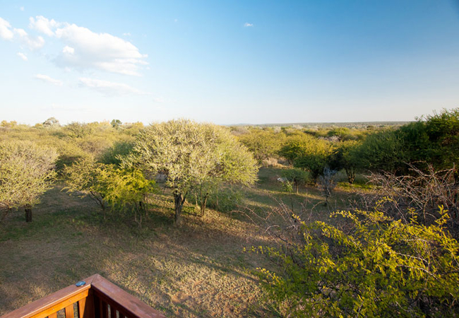 Leopardsong Game Lodge