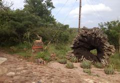 Leopards Rock Bush Boutique