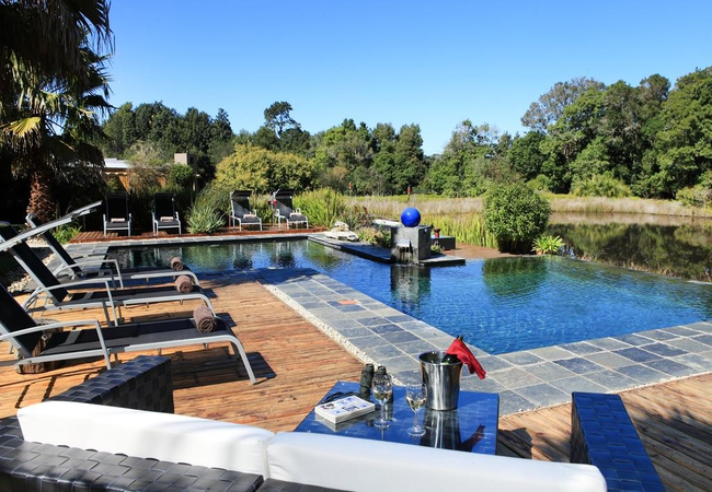 Lily Pond pool