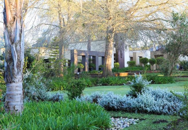 Garden Lily Pond