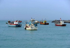 Struisbaai fishing boats