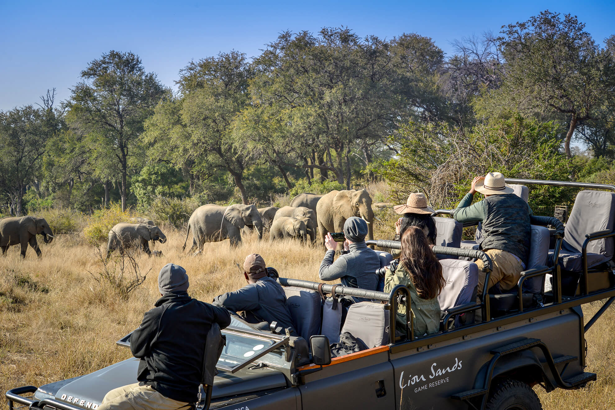 Lion Sands Private Game Reserve In Sabi Sands Mpumalanga