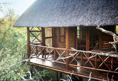 Lion Tree Bush Lodge