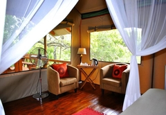 Lion Tree Top Lodge