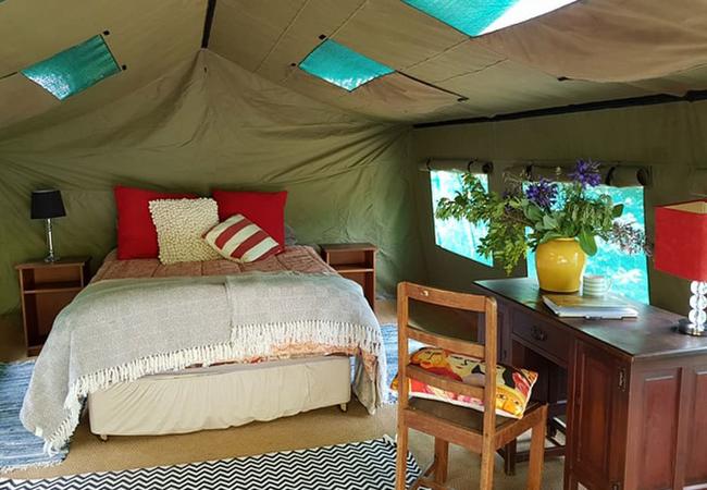 Queen Tent