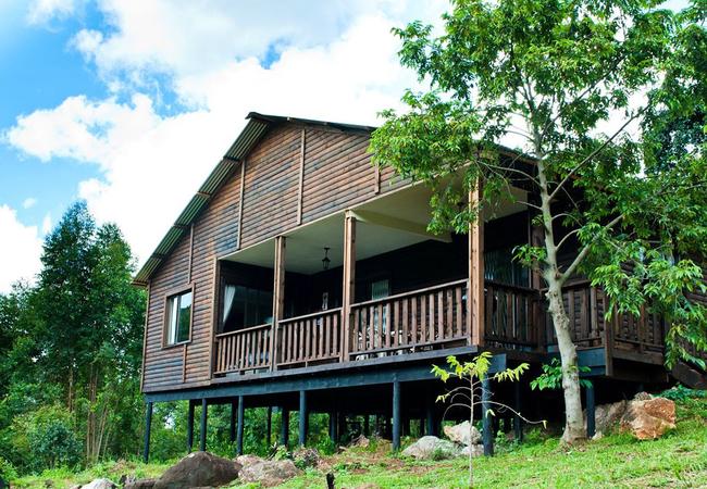 Log Cabin 4