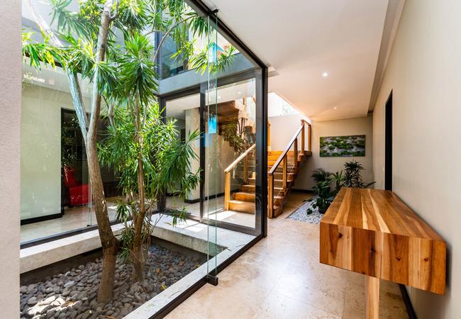 Indoor zen garden