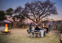 Safari experiences