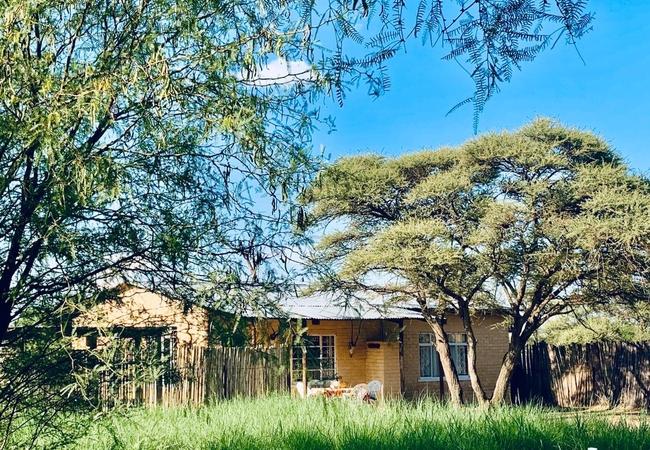 Marrick Safari