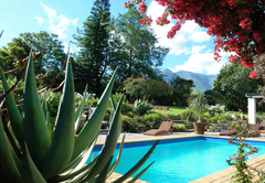 Honeymoon in Cape Overberg