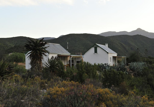 Matjiesvlei Guest Farm