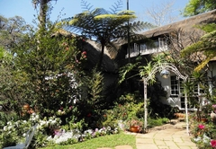 Bed & Breakfast in Pretoria
