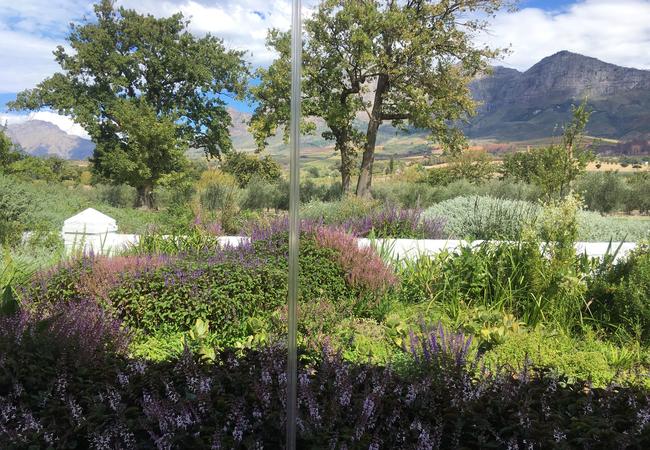 Lovely Franschhoek views
