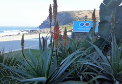 Self Catering in Wild Coast