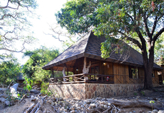 Moholoholo Forest Camp