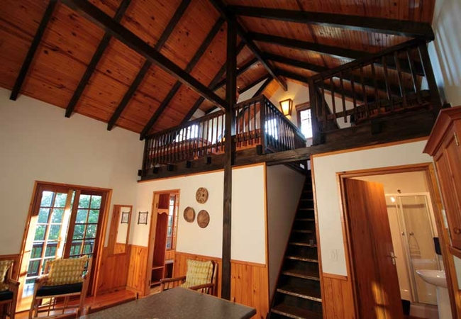 Tree Frog Forest Cabin Interior