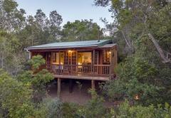 Bushpig Forest Cabin
