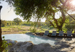 Motswari Private Game Lodge