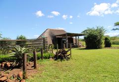 Sasane Camp 1