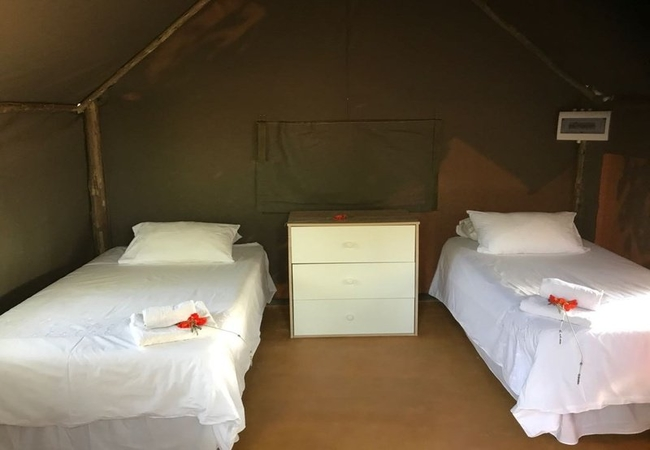 Tent Houses
