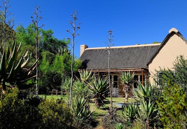 Black Poodle Cottage