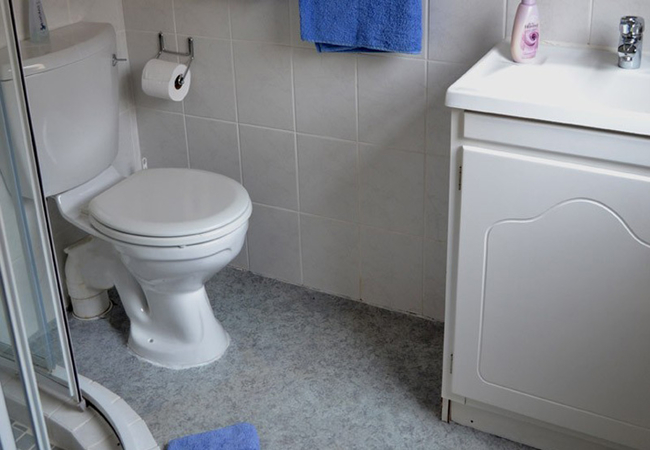 Meerkat Manor bathroom