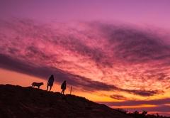 @ Nature Cottages