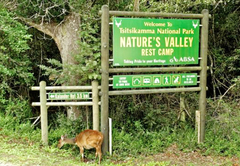 Natures Valley Rest Camp