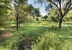 Ndzhaka Tented Camp