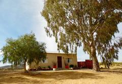 Nuwedam Guest Farm
