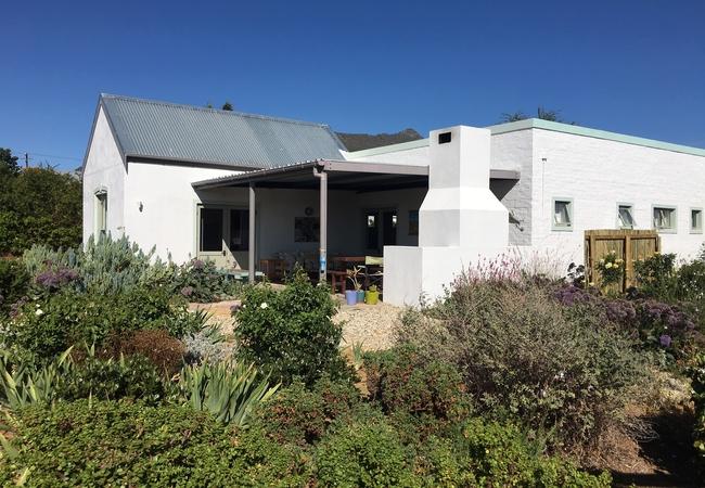 Obiekwa Country House Vineyard view