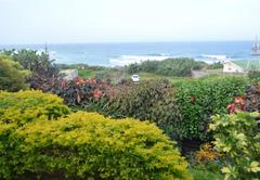 Ocean's Paradise