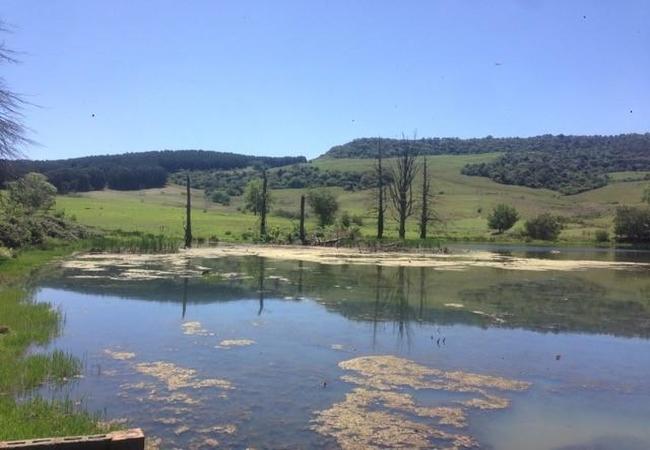 1st Fishing Dam
