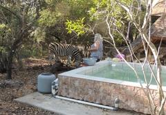 Olifant Marloth Park