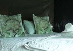 The Alpaca Tent