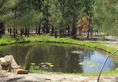 Otium Oasis