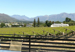 Paarl Mountain Lodge