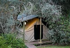 Deep Forest Tent