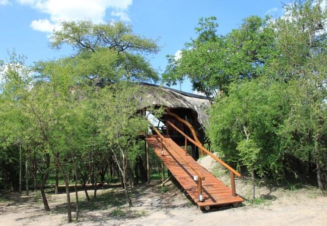 Marula Luxury Family Tree House