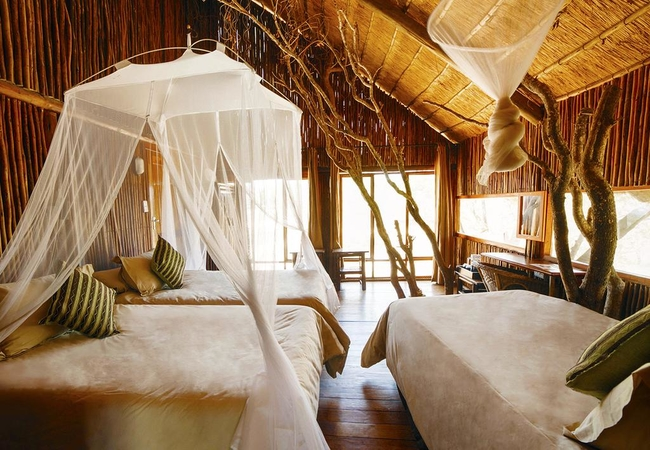 Bushwillow Superior Tree House