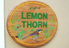 Lemon Thorn Cottage